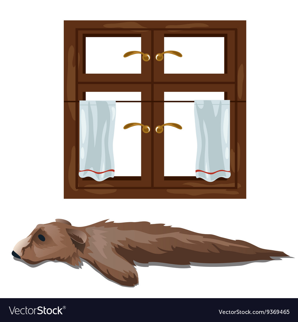 Skin of bear hunting trophy and window vector