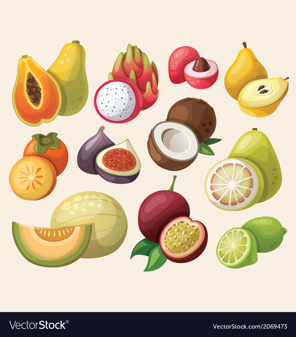 Set of exotic fruit vector