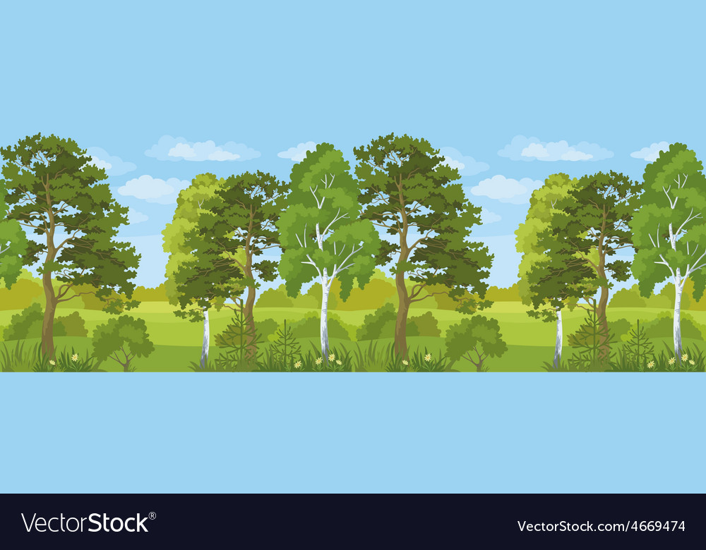 Seamless horizontal landscape summer forest vector