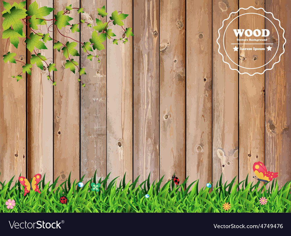 Fresh spring green grass with leaf plant over wood vector