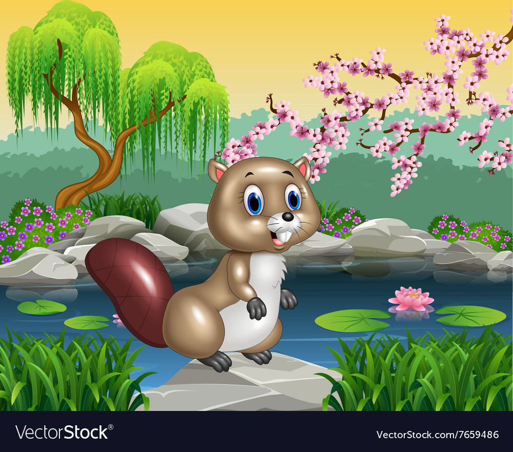 Cartoon beaver posing on the rock vector