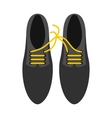 Tied laces on shoes icon flat style vector image