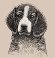 Dog drawing vector image