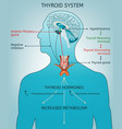 thyroid system poater vector image