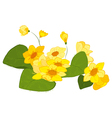 Hand drawn yellow blooms vector image