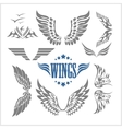 Set of decorative wings isolated vector image