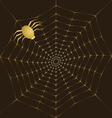 Cobweb of gold and spider vector image