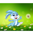 Happy little bunny jumping on grass background vector image