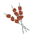 Meats on skewers vector image vector image