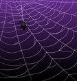 Spider Webs on Purple Background vector image