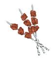 Meats on skewers vector image
