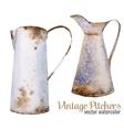Retro vintage pitcher vector image