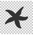 Sea star sign Dark gray icon on transparent vector image