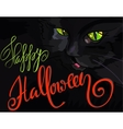 Halloween with black cat Helloween vector image