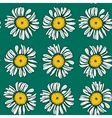 Beautiful vintage background with white daisies vector image