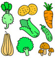 doodle of vegetable various collection vector image