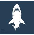 Danger Shark silhouettes set vector image