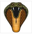 Cobra head - color vector image