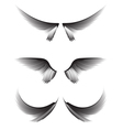 Set gray wings on white background design element vector image vector image