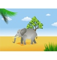 elephant in the savanna vector image vector image