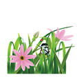 Grass with pink flowers vector image