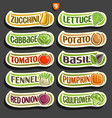 set labels for vegetables vector image