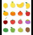 Set of fruit Healthy food vector image
