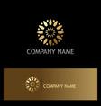 gold flower circle company logo vector image