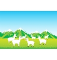 Herd sheep in field vector image