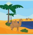 oasis on desert vector image