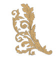 ornament baroque vector image