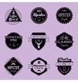 hipster emblems violet vector image