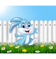 Happy little bunny running in the garden vector image