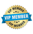 vip member round isolated gold badge vector image