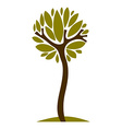 Artistic stylized natural symbol creative tree Ca vector image