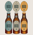 sample three beer bottles with labels vector image