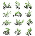 green floral elements curled leafs vector image