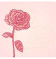 Flower invitation floral vintage card vector image