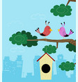 two birds sitting on branch vector image