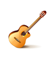 Classic guitar isolated on white vector image vector image