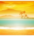Background with sea and palm trees vector image