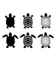 set of turtle and tortoise iconstop view vector image