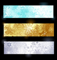 Grunge banner with snowflakes vector image