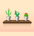 colorful light houseplants set vector image