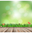 Fresh spring green grass with green bokeh vector image vector image