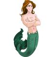 Mermaid boy vector image