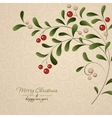 Green sprig with red berries isolated on vintage vector image