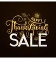Happy Thanksgiving Sale vector image
