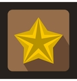 Shiny golden star icon in flat style vector image