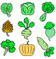 doodle of fresh vegetable various vector image